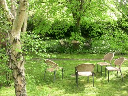 Chairs in the orchard